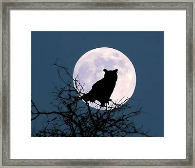 Owl And Blue Moon Framed Print