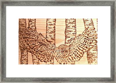 owl Framed Print by Art  Pyrography