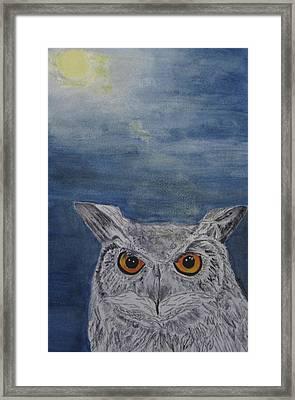 Owl By Moonlight Framed Print