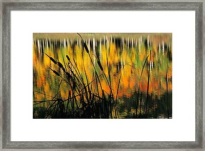 Owl Creek Pass Fall 3 Framed Print
