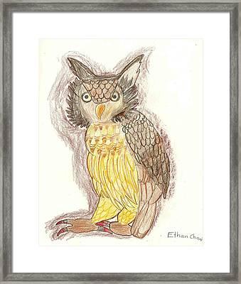 Wise Owl Framed Print by Ethan Chaupiz