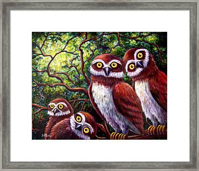 Owl Family Framed Print by Sebastian Pierre