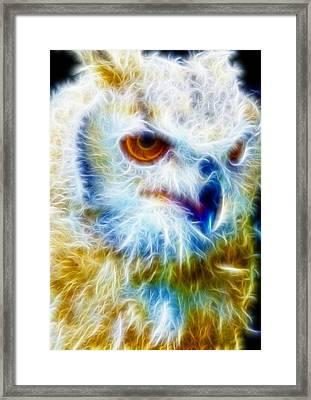 Owl - Filter Effect Manipulation Framed Print