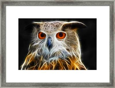 Owl Fractal Art Framed Print by Matthias Hauser