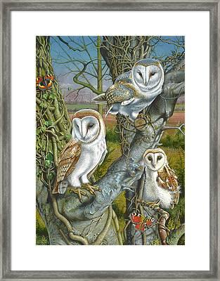 Owl Gathering Framed Print