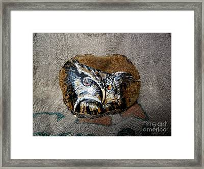 Owl Framed Print by Ildiko Decsei