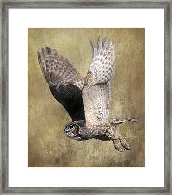 Owl In Flight Framed Print by Angie Vogel