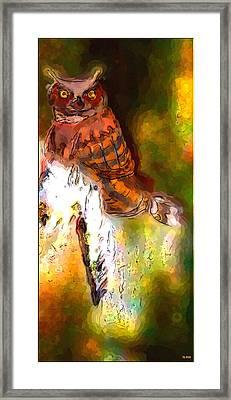 Owl In The Woods Framed Print by Daniel Janda