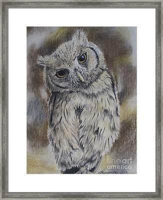 Owl Framed Print by Laurianna Taylor