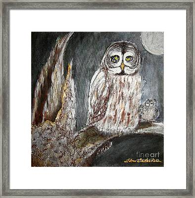 Owl Mother Framed Print by Elena  Constantinescu