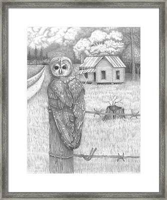 Owl On A Post Framed Print by David Gallagher