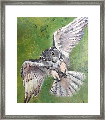 Framed Print featuring the painting Flying Owl by Rose Wang