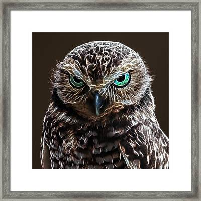 Owl See You In Hell Framed Print by Wes and Dotty Weber
