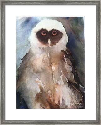 Owl Framed Print by Sherry Harradence