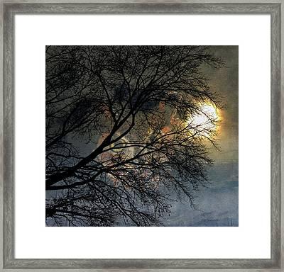 Owl Spirit Moon Glow Framed Print by Barbara Chichester