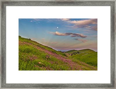 Owl's Clover And Moon With Anticrepuscular Rays Framed Print by Marc Crumpler