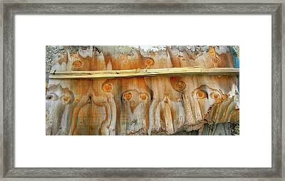 Owls In The Wood Framed Print by KD Johnson