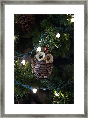 Framed Print featuring the photograph Owly Christmas by Patricia Babbitt