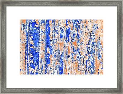 Oxalic Acid And Rhamnose Crystals Framed Print