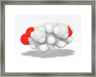 Oxandrolone Anabolic Steroid Molecule Framed Print