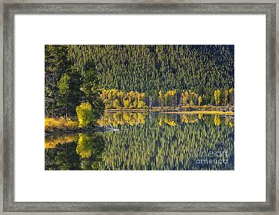 Oxbow Abstract Framed Print by Mark Kiver
