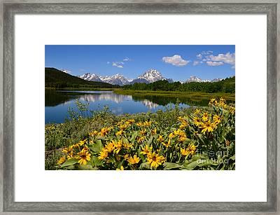 Oxbow Bend Splendor Framed Print