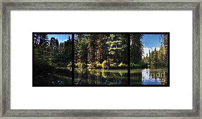 Oxbow Triptych Framed Print by Peter Piatt