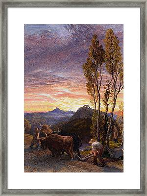 Oxen Ploughing At Sunset Framed Print by Samuel Palmer