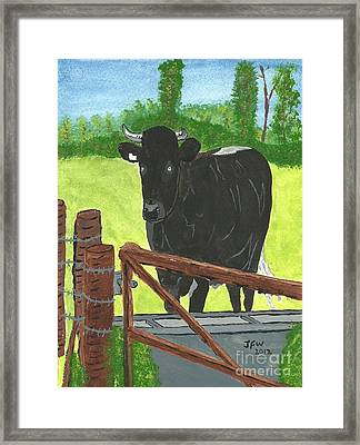Framed Print featuring the painting Oxleaze Bull by John Williams