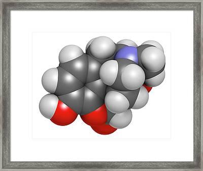 Oxymorphone Opioid Analgesic Drug Framed Print