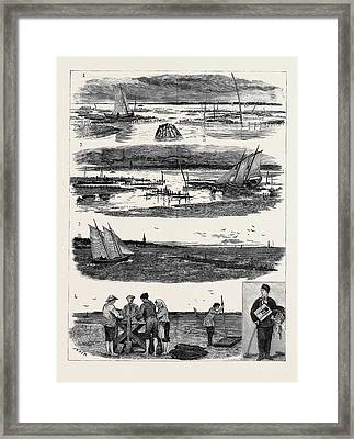 Oyster Culture At Arcachnon 1. The Oyster Parc At Half Low Framed Print by English School