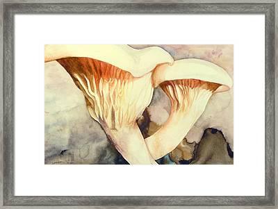 Oyster Mushrooms Framed Print