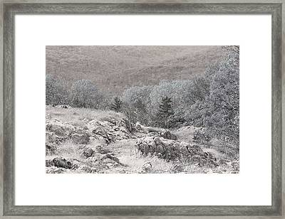 Ozark Glade On Taum Sauk Mountain Framed Print