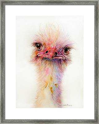 Ozzy The Ostrich Framed Print