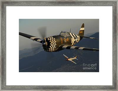 P-47 Thunderbolts Flying Over Chino Framed Print