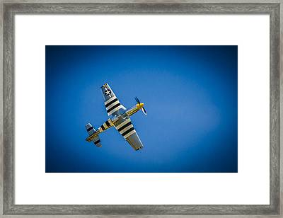 P-51 Invasion Stripes Framed Print by Bradley Clay