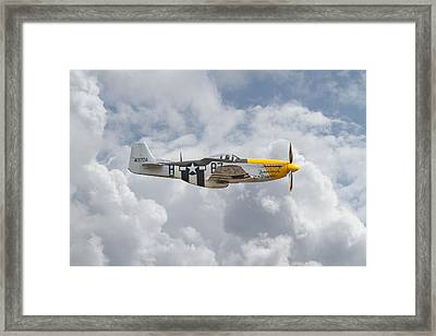 P51 Mustang Gallery - No5 Framed Print by Pat Speirs