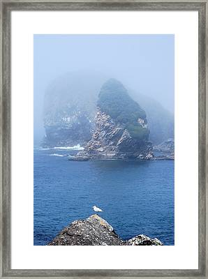 Pacific Blue Framed Print by Richard Hinger