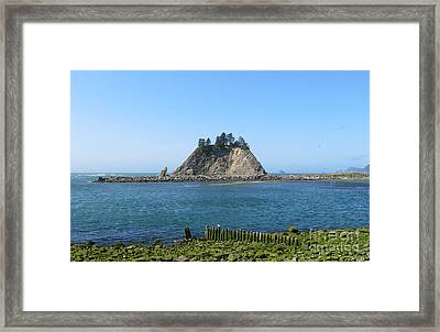Pacific Coast At La Push Framed Print