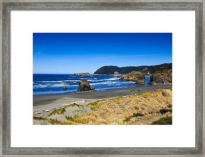 Pacific Coast Framed Print by Donald Fink