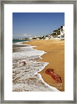 Pacific Coast Of Mexico Framed Print by Elena Elisseeva