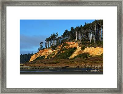 Pacific Coastline Framed Print