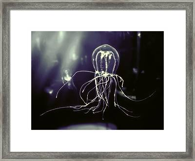 Pacific Fluorescent Jellyfish Framed Print