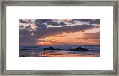 Pacific Glory Framed Print by Loree Johnson