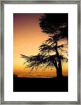Pacific Framed Print by Mark Alder