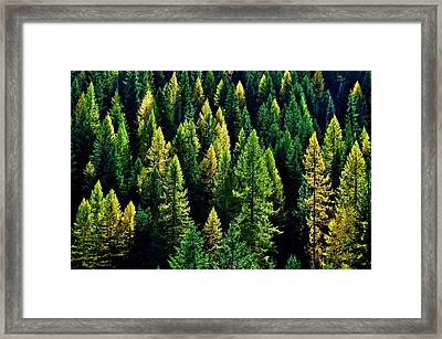 Framed Print featuring the photograph Pacific Northwest Autumn by Benjamin Yeager