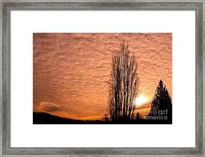 Pacific Northwest Winter's Sky Framed Print
