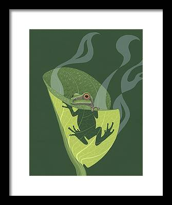 Amphibians Framed Prints