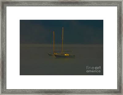 Pacing The Cage Framed Print by Mitch Shindelbower