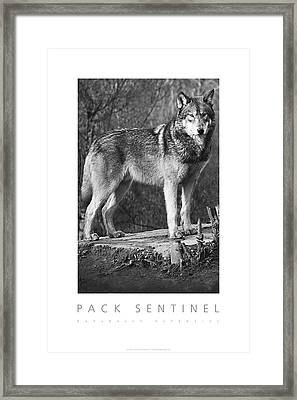 Pack Sentinel Naturally Defensive Poster Framed Print